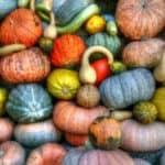 DIY Glitter Pumpkin Craft