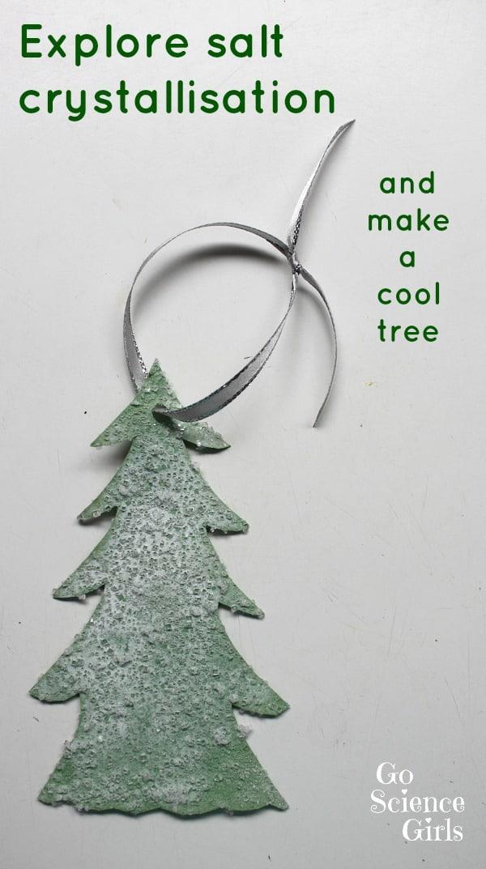 Make a 'snowy' salt crystal tree – Go Science Kids