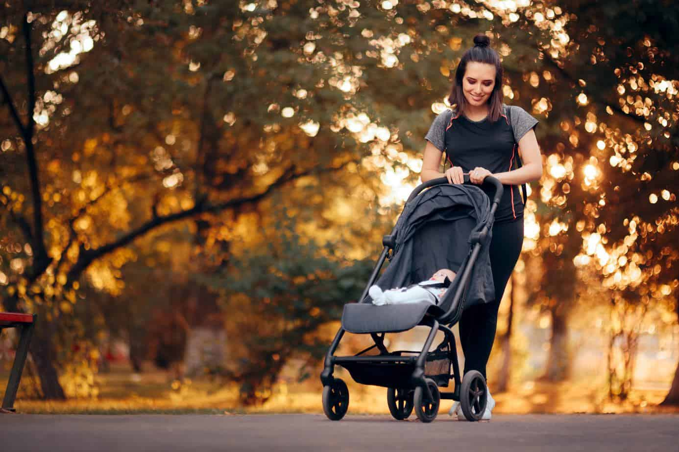 Armadillo Flip XT Stroller Review