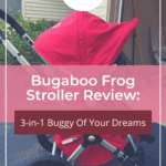 Bugaboo Frog Stroller Review